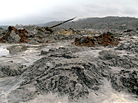 Coal Ash piles on Watts Bar Lake following the TVA coal ash disaster in December 2008